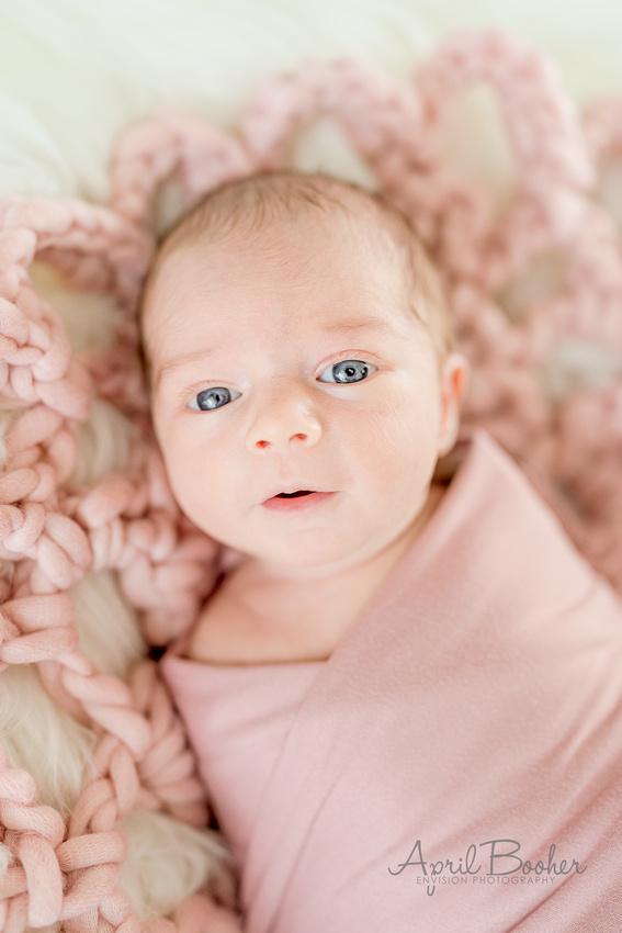 Newborn Photographer Kingsport TN-1