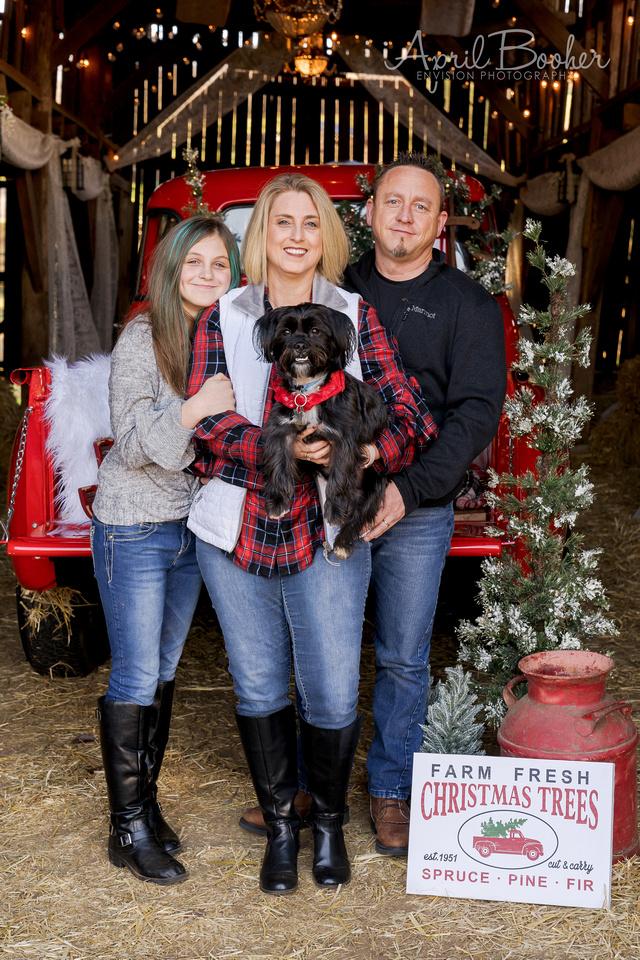 Christmas Minis Broken J Farm-70