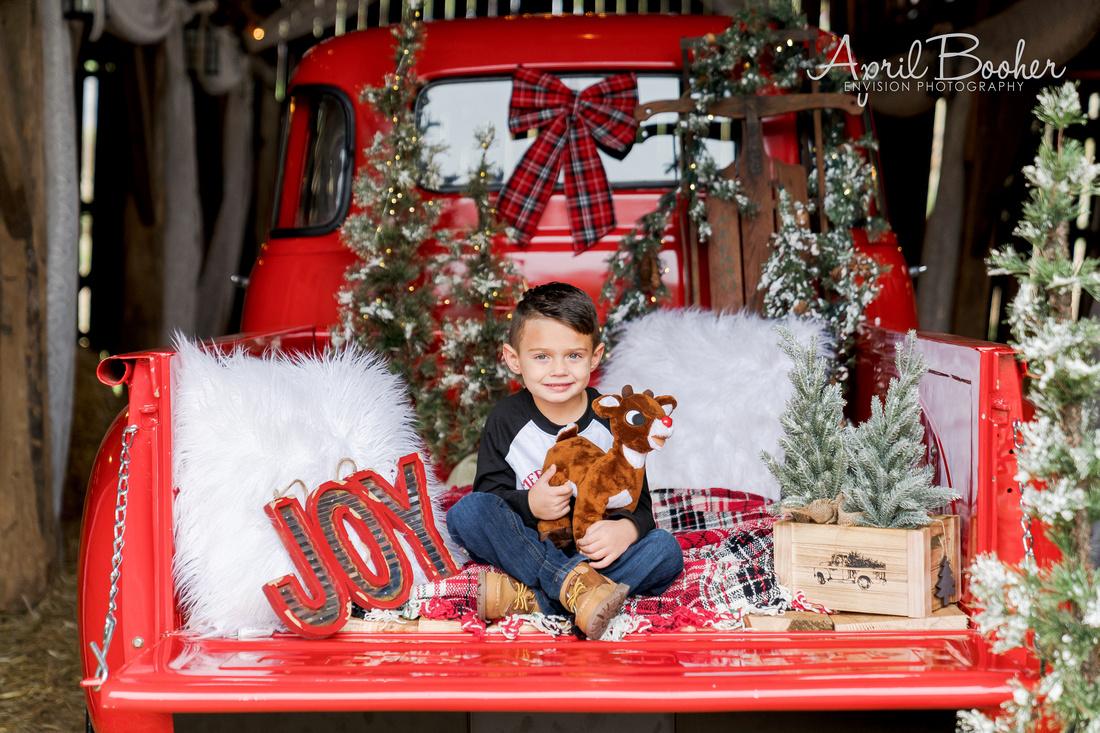 Christmas Minis at Broken J Farm-39