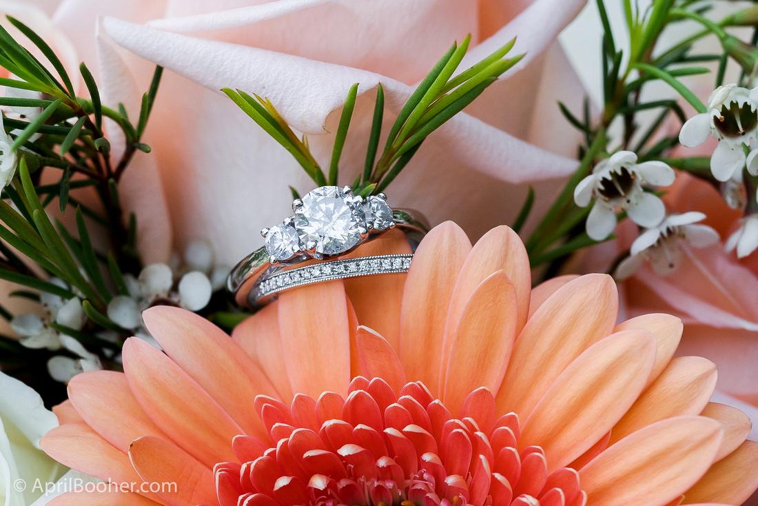 Wedding Photographer at Storybrook Farm Jonesborough TN-7