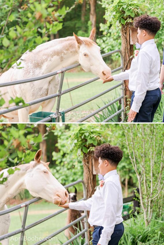 Wedding Photographer at Storybrook Farm Jonesborough TN-77