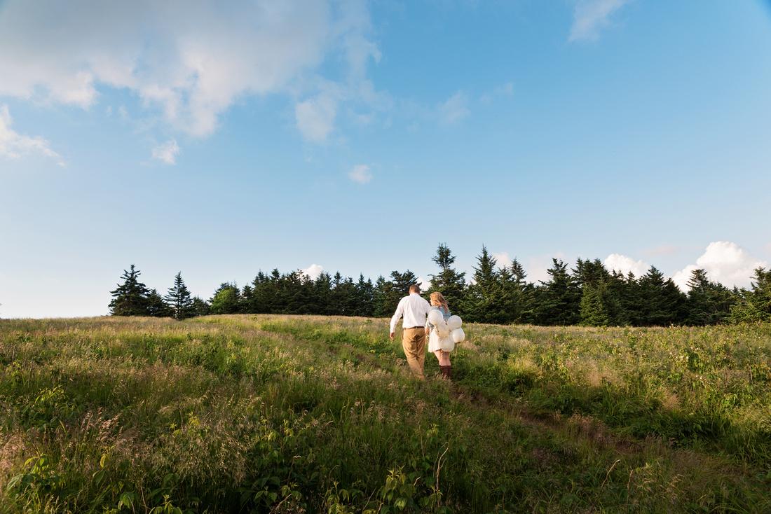 Roan mountain state park wedding
